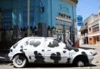 car graffiti buenos aires cow buenosairesstreetart.com