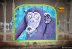 monkey street art ice street artist interview buenos aires graffiti tour buenosairesstreetart.com