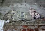 no touching ground street arte urbano buenos aires buenosairesstreetart.com