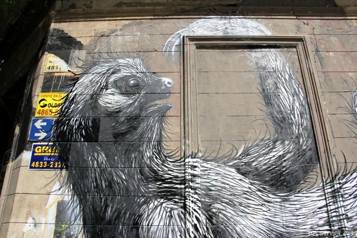 roa graffiti argentina buenos aires mural sloth spray belgian street artist buenosairesstreetart.com street art