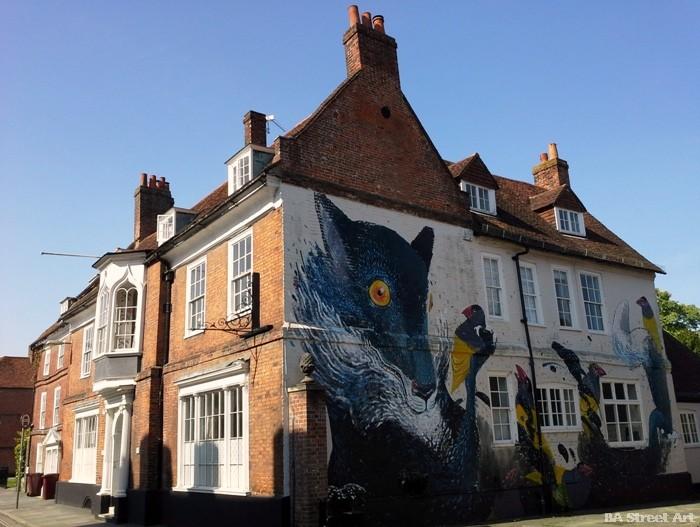 chichester street art festival hitnes buenosairesstreetart.com