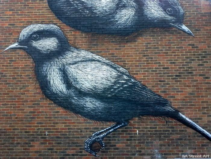 roa chichester street art festival buenosairesstreetart.com