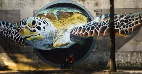 Ron Martin's Turtle