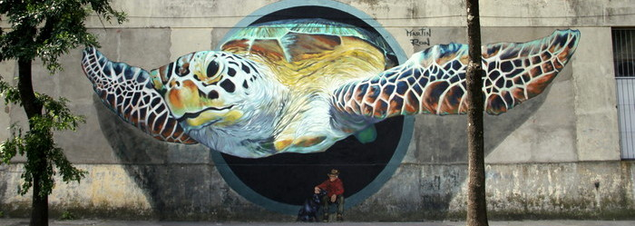 martin ron turtle buenos aires street art buenosairesstreetart.com