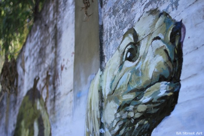 martin ron turtle buenos aires street art