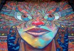 santiago street art chile murals san museo a cielo abierto buenosairesstreetart.com
