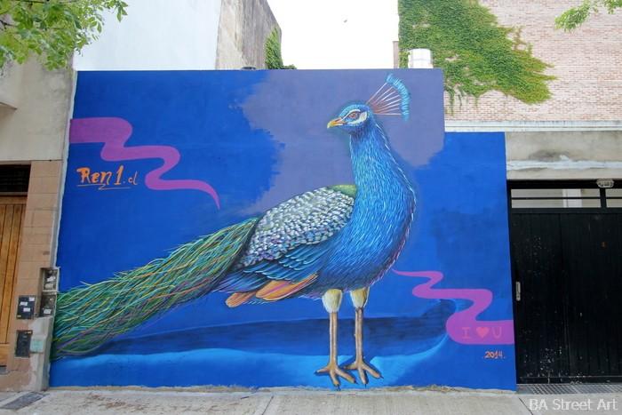 peacock mural buenos aires street art arte urbano ren buenosairesstreetart.com