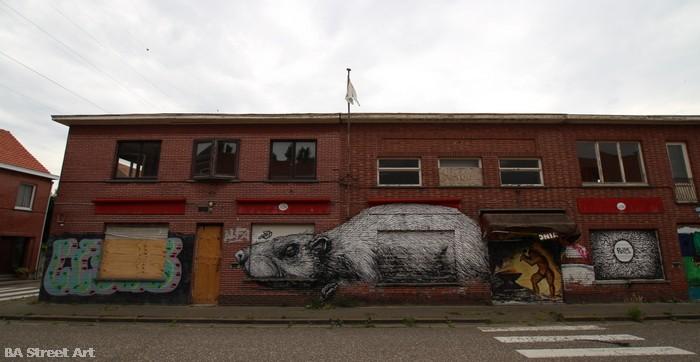 belgium street art doel roa graffiti town