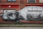 roa doel graffiti belgium