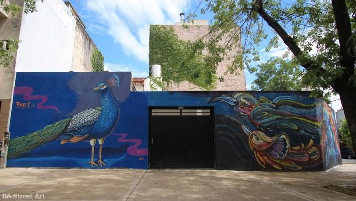 travel photography street art peacock mural bird ren artist nomada buenos aires buenosairesstreetart.com