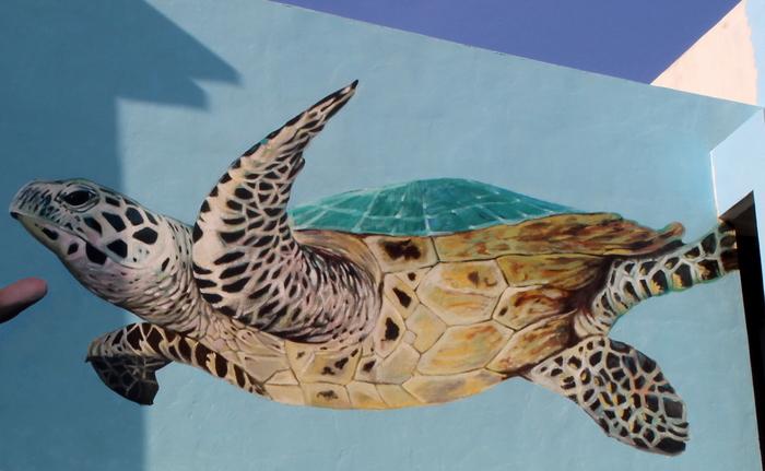 turtle mural conservation penang malaysia wall art painting mural buenosairesstreetart.com