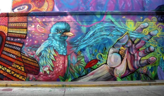 bird graffiti tekaz bater buenos aires street art graffiti