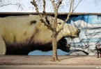 greenpeace buenos aires arctic mural graffiti buenos aires alfredo segatori muralista ba street art pelado buenosairesstreetart.com