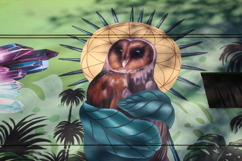 lechuza arte mural buenos aires arte baires buenosairesstreetart.com BA Street Art