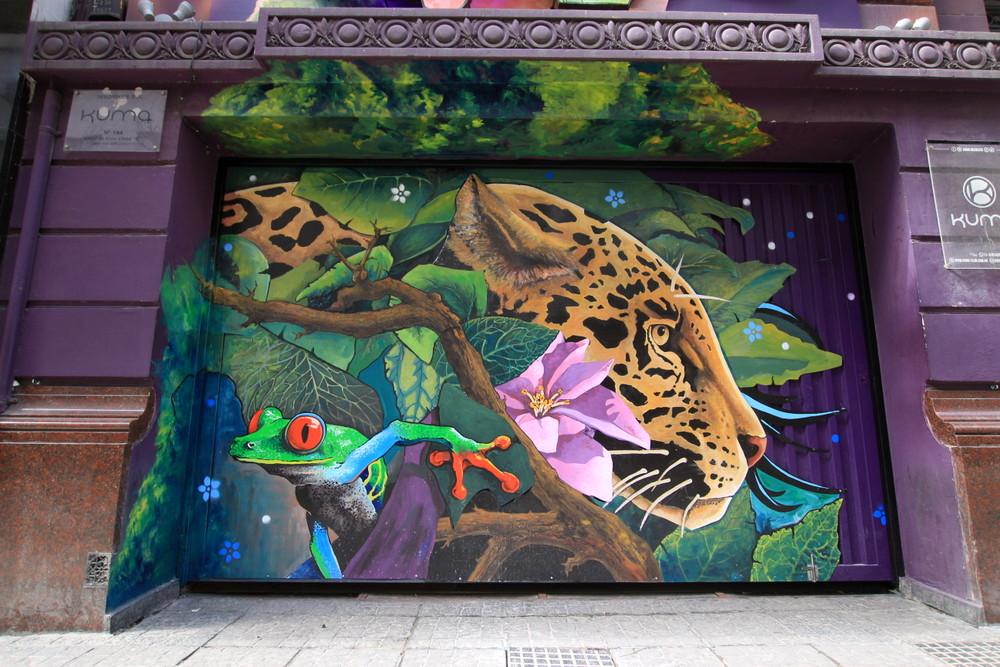 frog mural leopard buenos aires street art buenos aires graffiti buenosairesstreetart.com