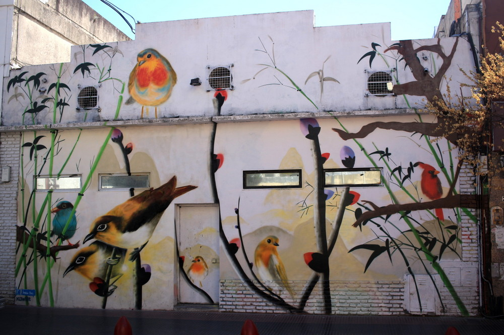 arte urbano buenos aires pajaros street art aves robin murales ba barrio chino buenosairesstreetart.com