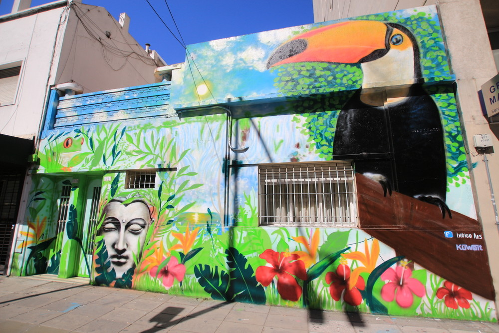 graffiti belgrano buenos aires toucan jungle barrio chino buddha arte callejero amazon selva iguazu buenosairesstreetart.com