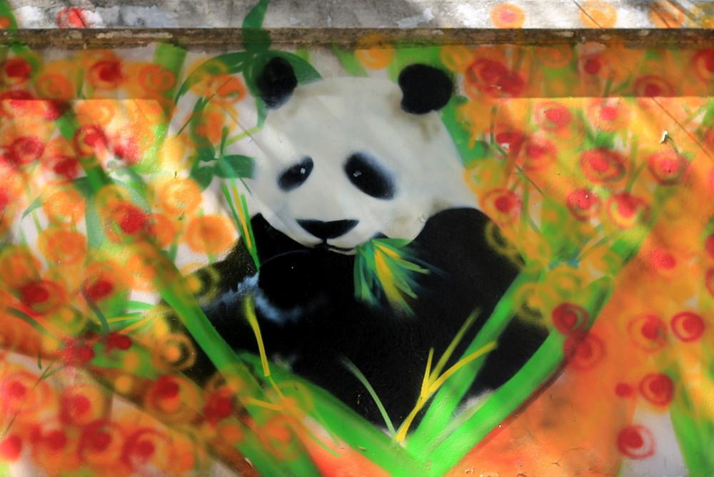panda street mural bamboo buenos aires arte urbano street art ba chinatown buenosairesstreetart.com