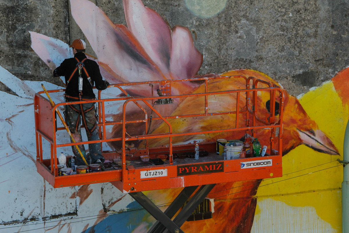 pajaro mural buenos aires spear buenos aires street art buenosairesstreetart.com