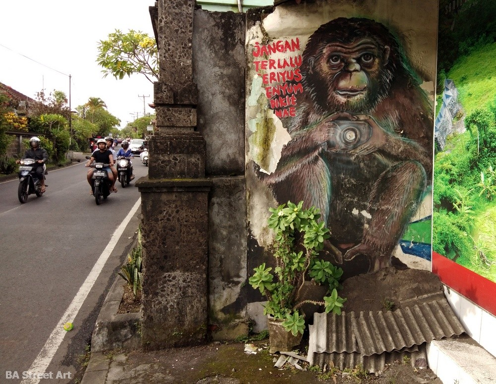 bali street art tour tourism monkey camera ubud indonesia road trip mural buenosairesstreetart.com