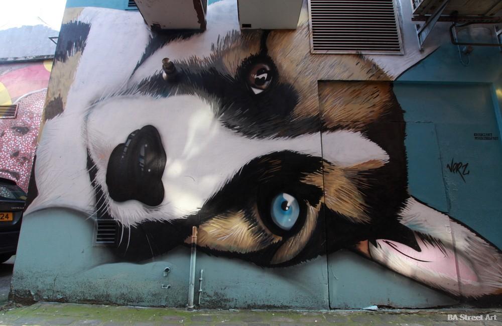 belfast graffiti tour dog cathedral quarter street art exchange place northern ireland verz conor harrington