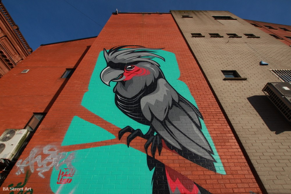 hit the north street art festival belfast dan leo mural cockatoo bird northern ireland